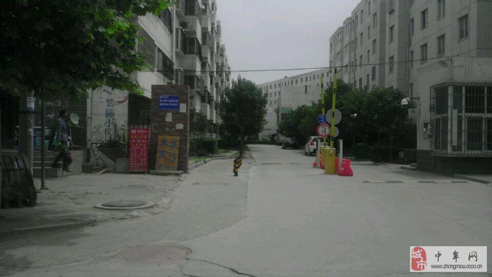 《文博路家园旁,降价紫藤》低价小学,房源急售女小学生安徽图片