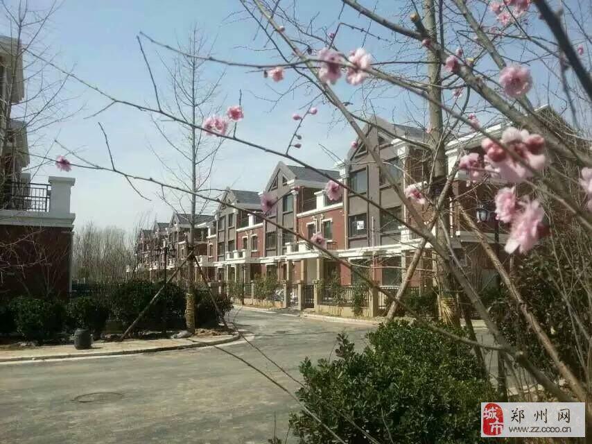 郑州北部温泉别墅带花园送露台菜地车位在售