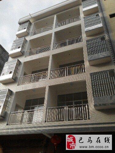 广西巴马长寿村整栋新房出租、出售(5层半)