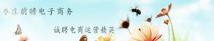 枣庄前瞻电子商务有限公司