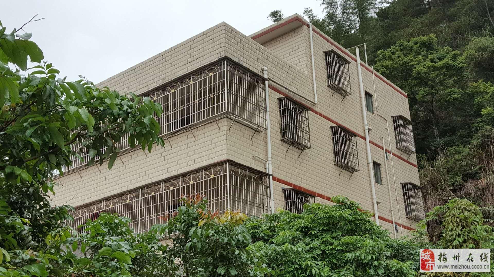 獨體樓8室5廳4衛218萬元
