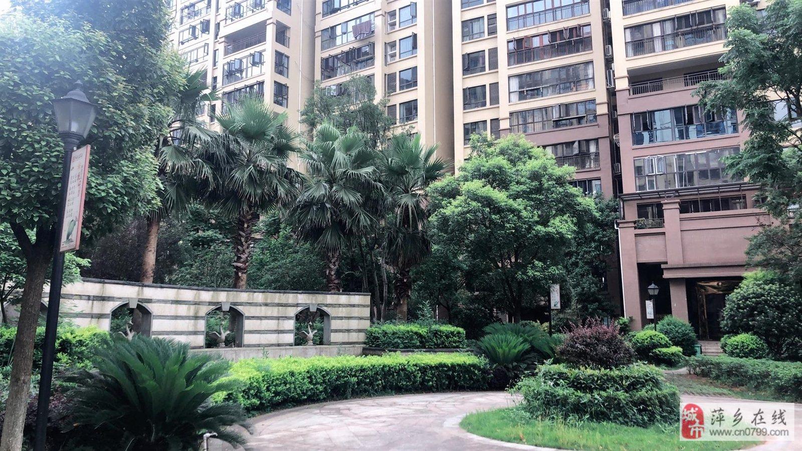 安源區高檔小區,4房,景盛豪庭電梯9樓,南北通透