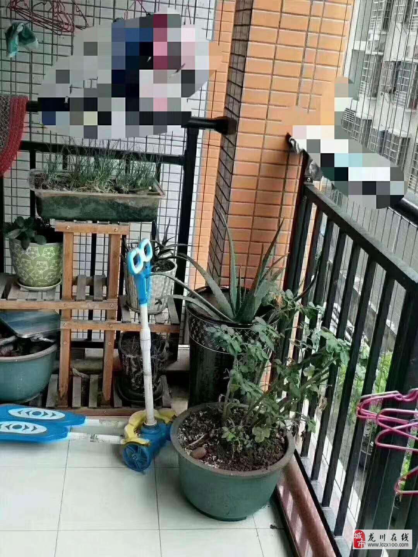 粤港花园4室2厅2卫64.8万元