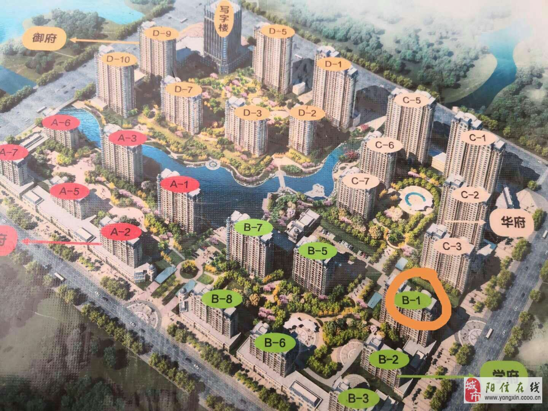 九龍湖一號沿街旺鋪237平182萬元直接簽合同