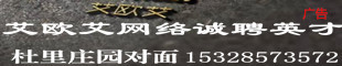 四川艾欧艾网络科技有限公司