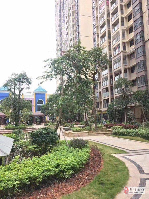 东源霸王花新城小区环境3房115平方中层63.8万