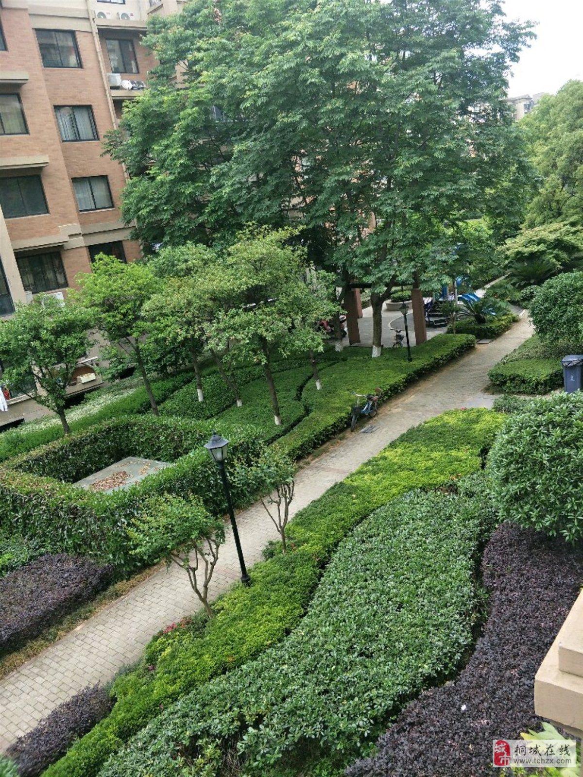 新东方3室2厅1卫76万元高档小区环境优美