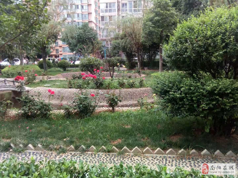 宇信旋城对面鑫邦花园3室132平87万3室2厅2卫87万元