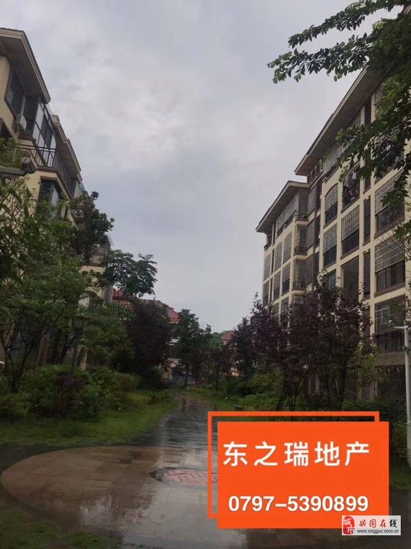 濱江新城3室2廳2衛黃金層