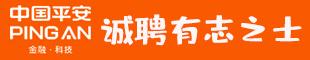 中��平安阜��公司