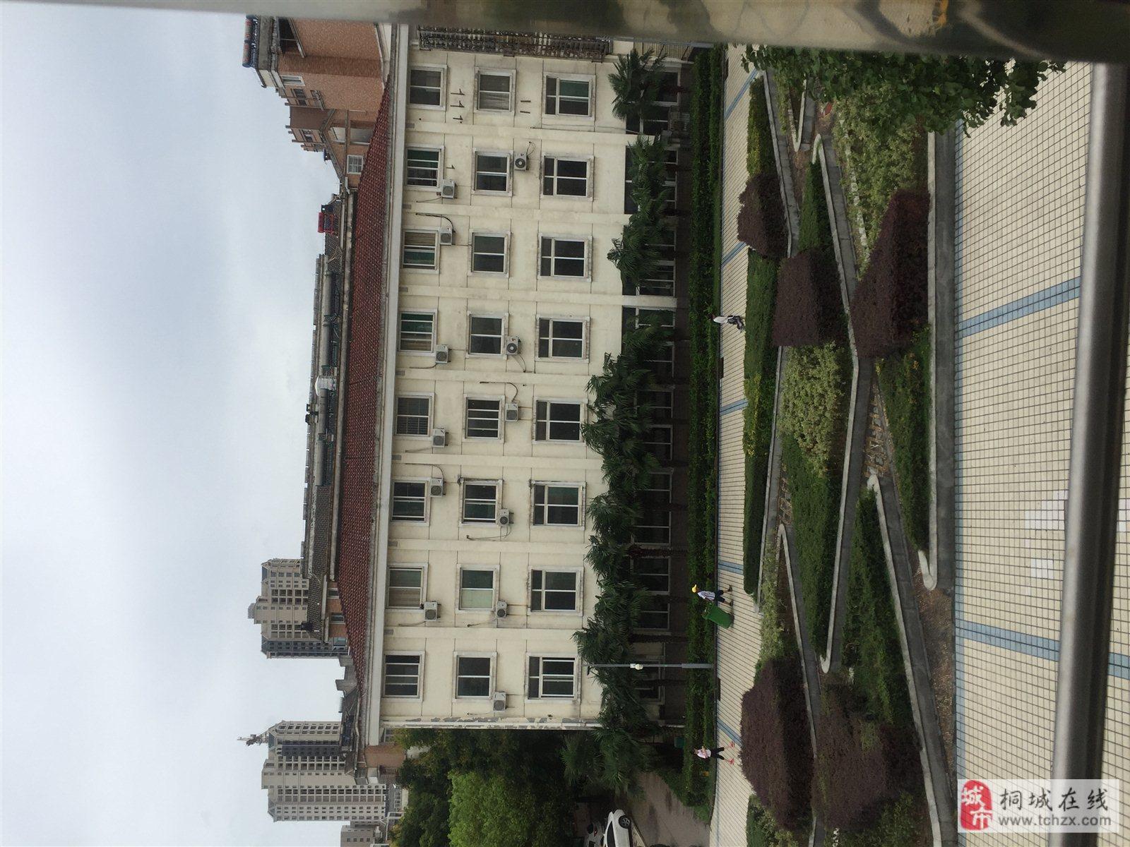 东部新城老城区居中繁华位置桐乐家园