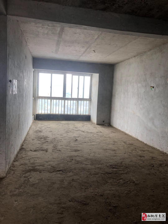 金阳广场电梯毛坯3室2厅2卫48.8万元