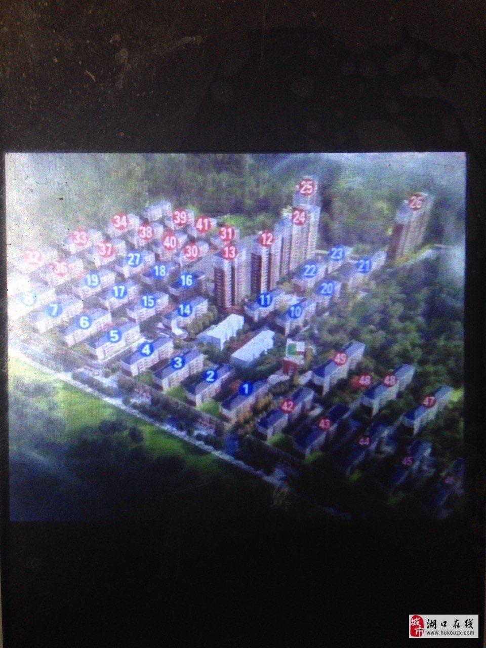 洋港安置區3室2廳2衛50萬元