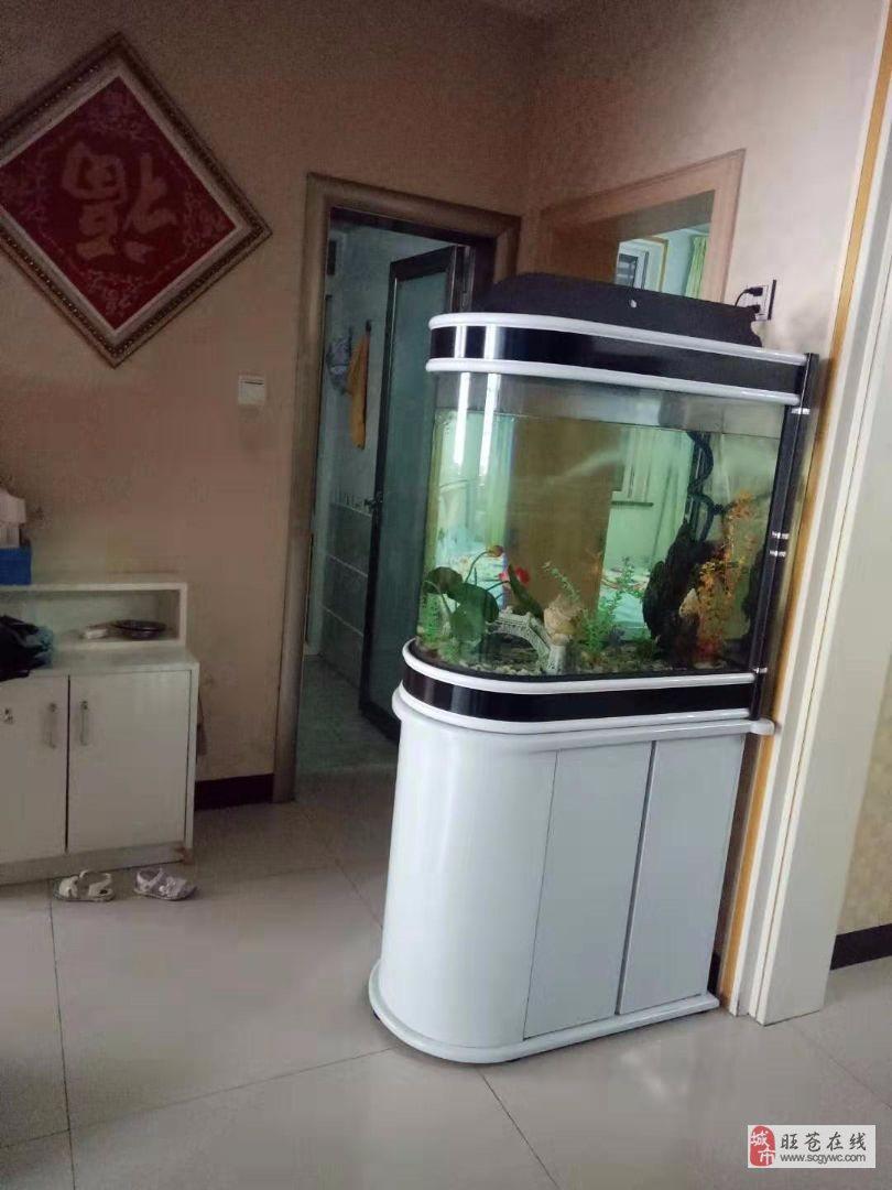 售:龟博士附近3室2厅2卫50万元