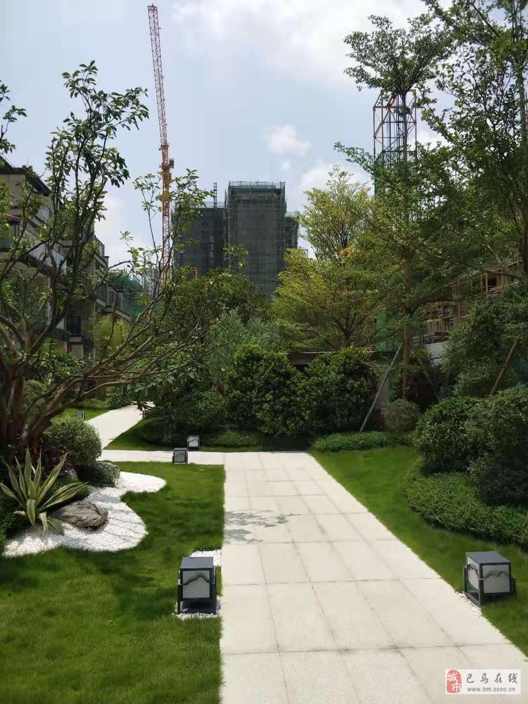 云星创客园5米层高公寓