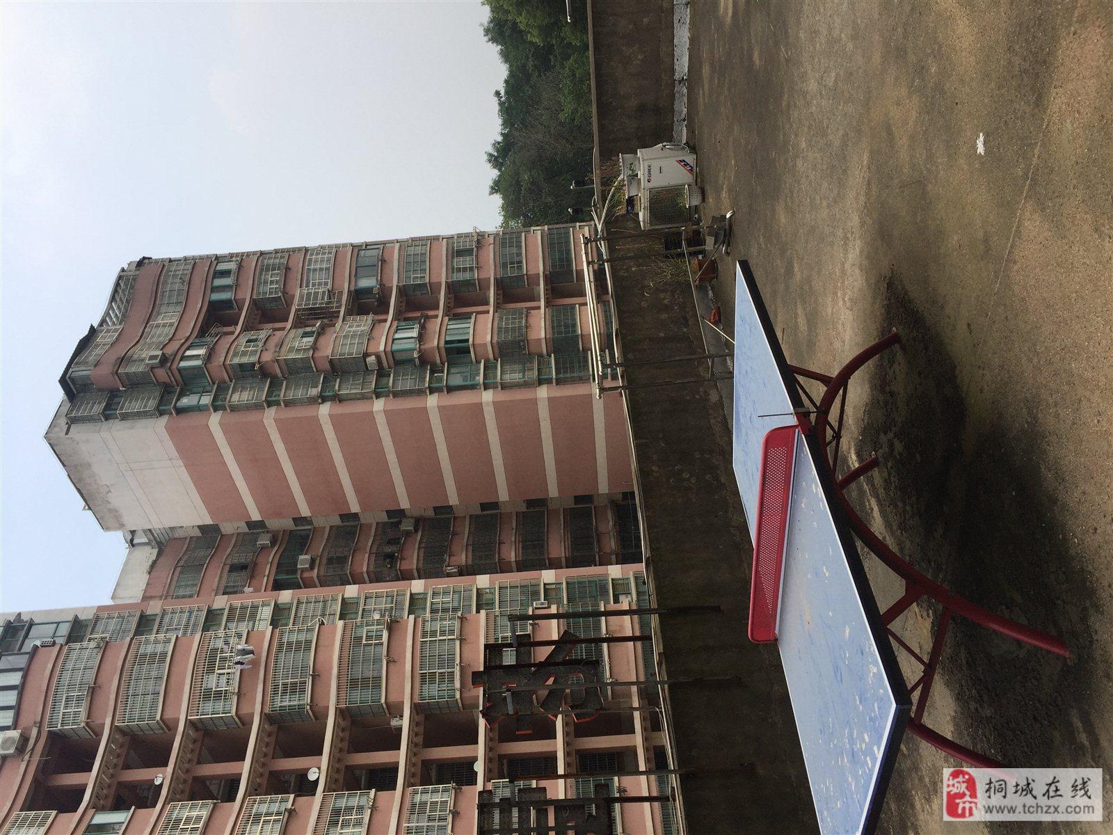 新上房源实验中学实小东校区电梯房盛景花园