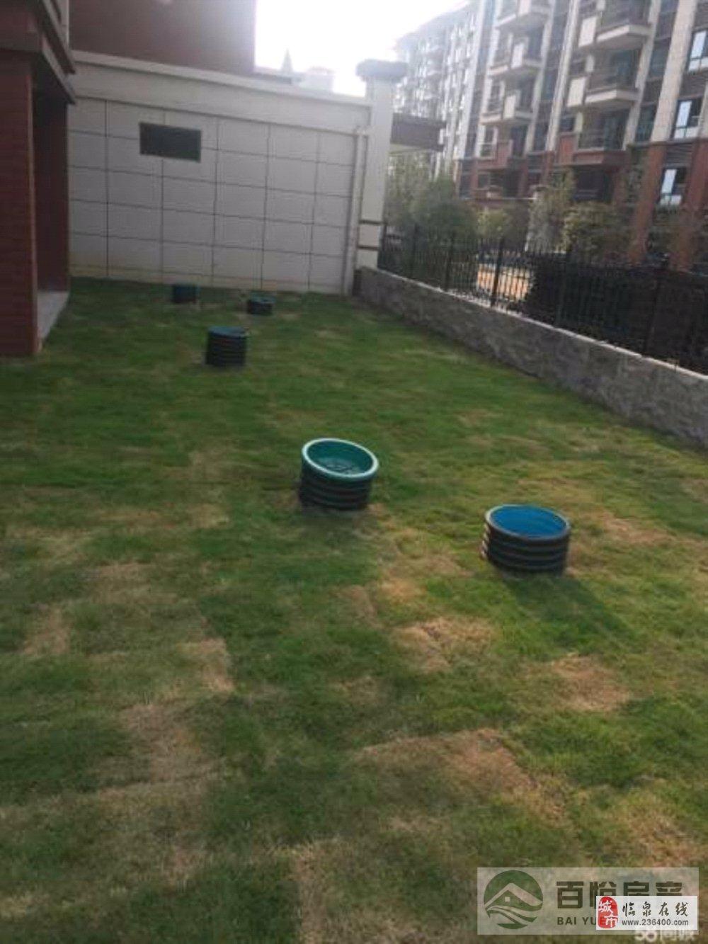 出售:临泉·碧桂园一楼带前后院看房方便