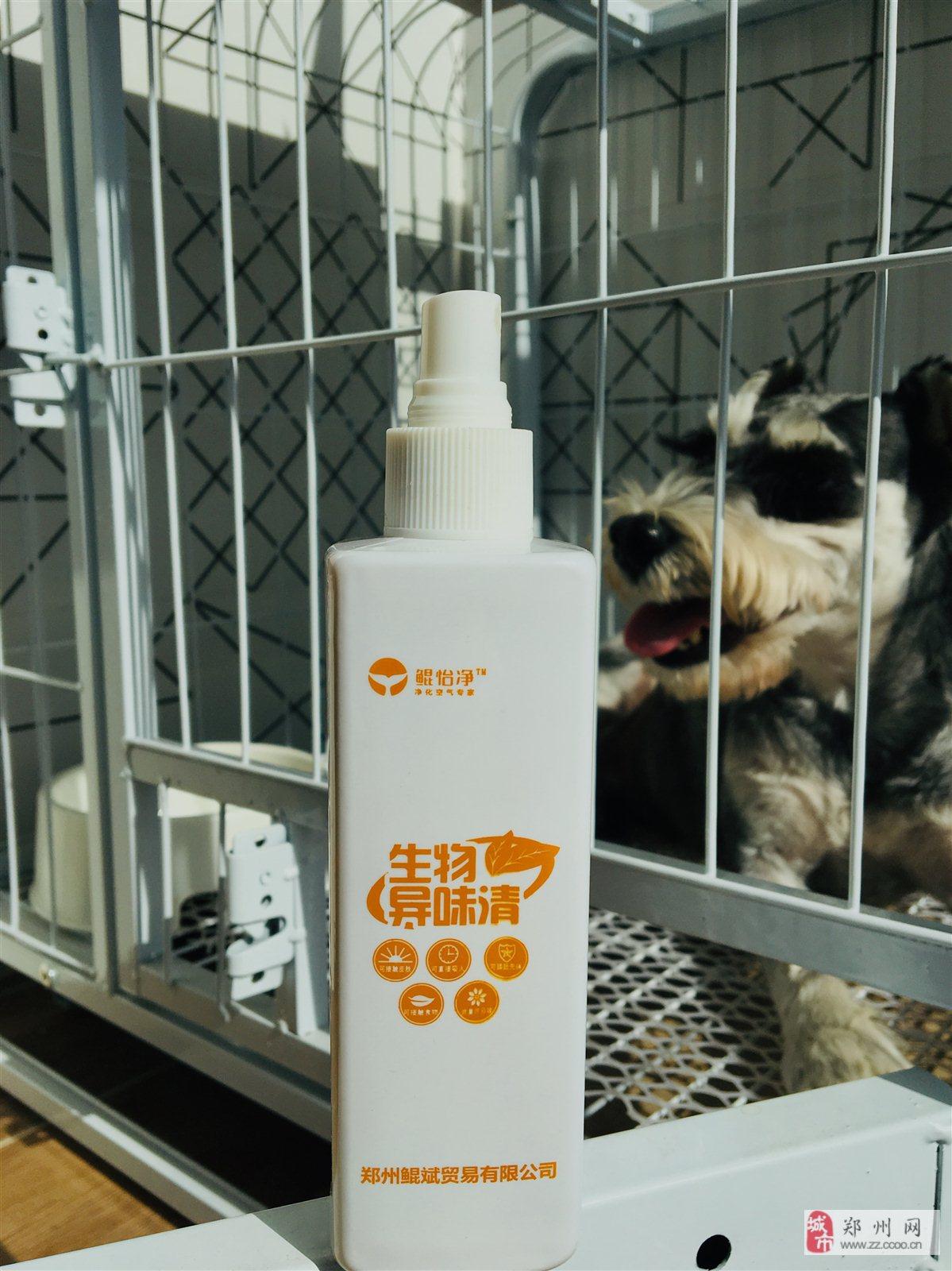 狗狗小貓寵物除味劑、益生菌除味技術,安全無害