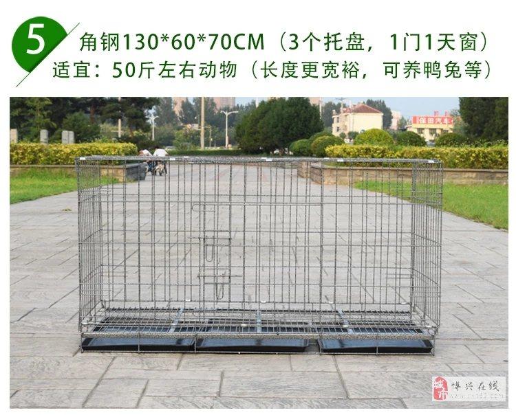 1.3米狗籠便宜賣