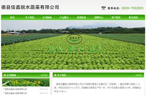 徽县佳鑫脱水蔬菜有限公司
