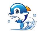 博跃小海豚运动俱乐部