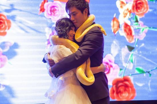 最大胆定情信物?新人婚礼现场互赠黄金蟒