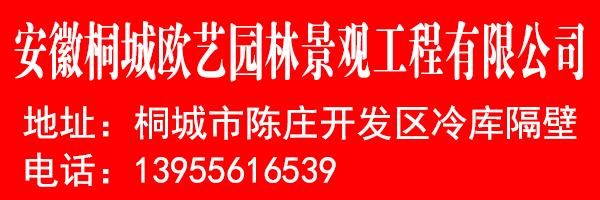 安徽桐城�W��@林景�^工程有限公司