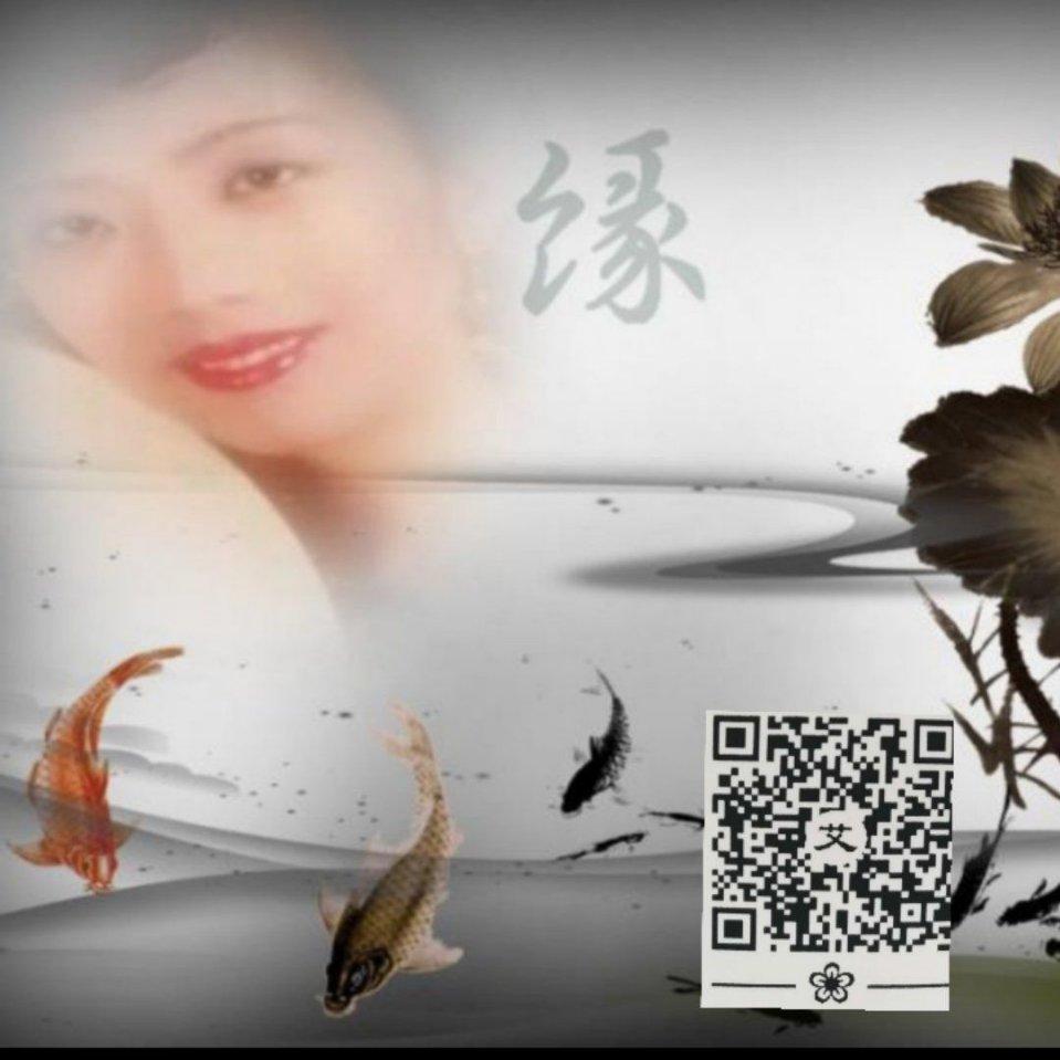 深圳前海艾艾贴