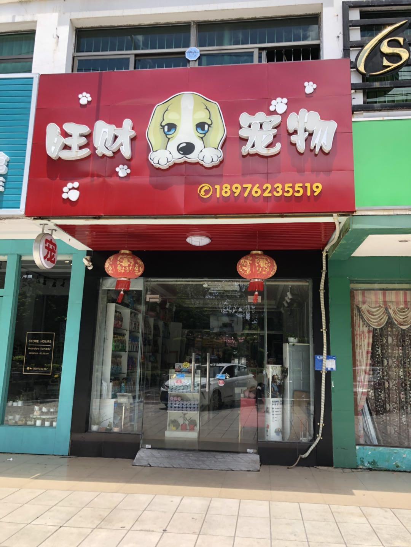 十年老�字号宠物店各种犬猫有售,包健康品质