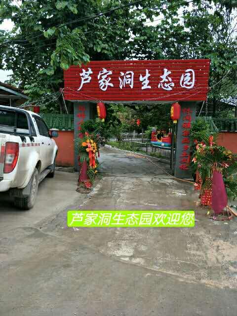 芦家洞生态园