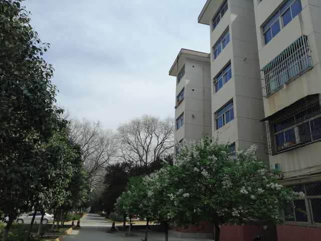 临潼康复路黄河疗养院2室 2厅 1卫31万元