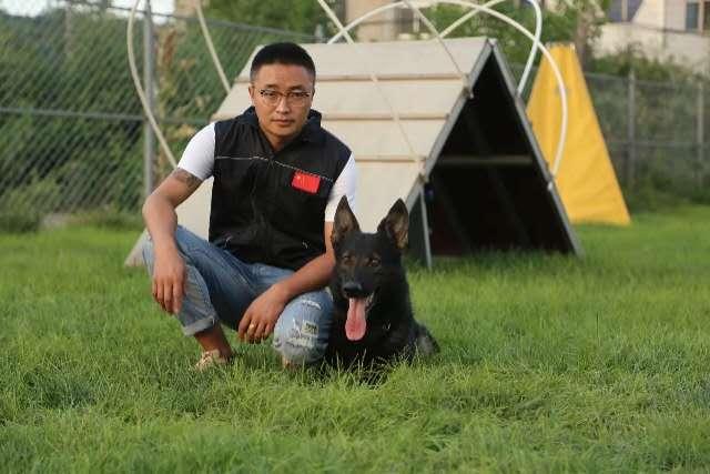 寵物訓練,寄養服務。